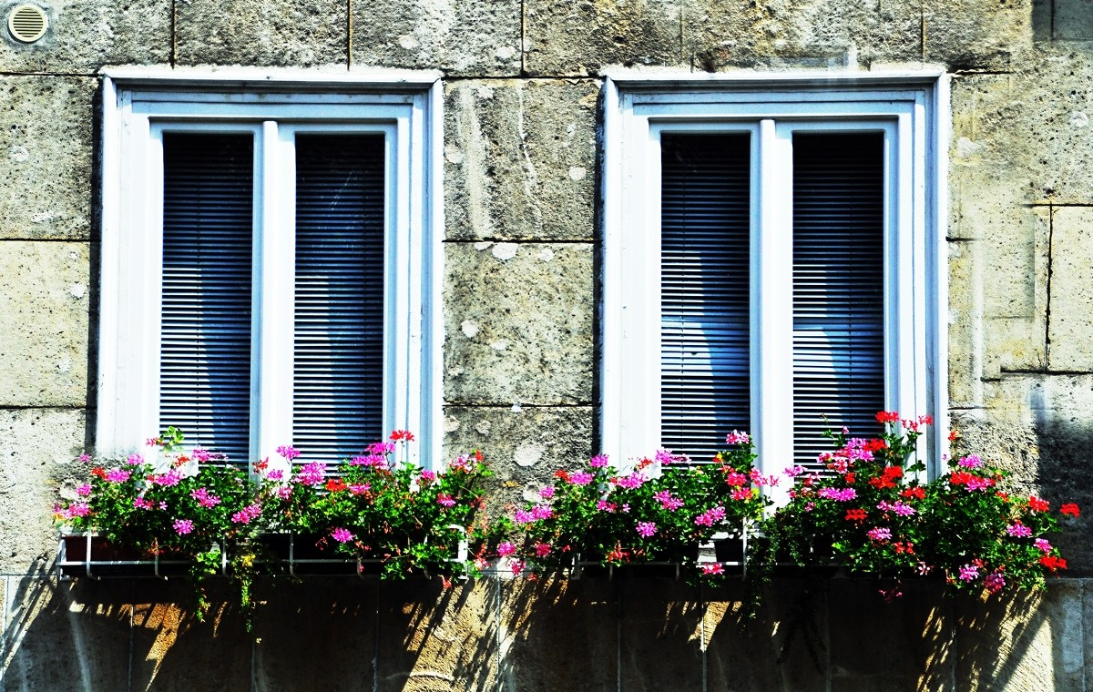 m_BudapestWindowBoxes