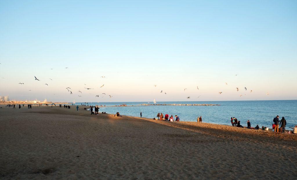 Barcelona's Barceloneta Beach